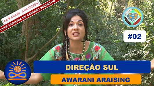 Direção Sul - Awarani Araising