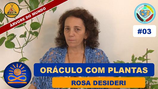 Oráculo com Plantas - Rosa Desideri