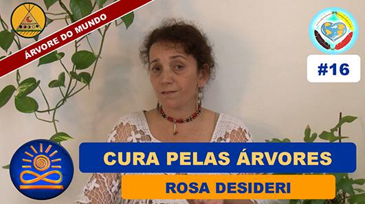 Cura pelas Árvores - Rosa Desideri