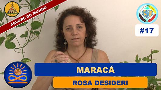 Maracá - Rosa Desideri