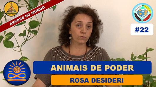 Animais de Poder - Rosa Desideri