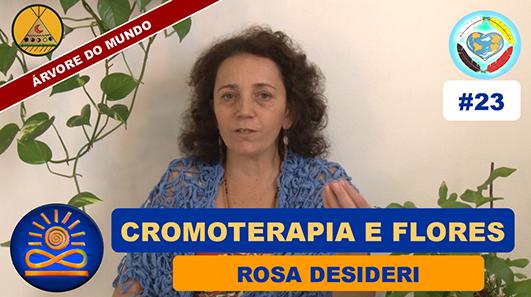 Cromoterapia e Flores - Rosa Desideri