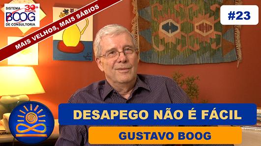Desapego não é fácil - Gustavo G. Boog