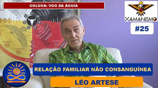 Relação familiar não consanguínea - Léo Artese