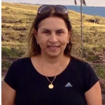 Sylvia Rheingantz Moniz